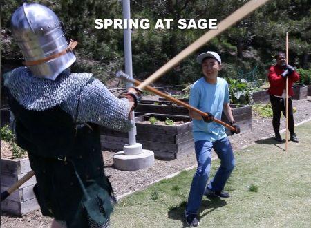 springatsage